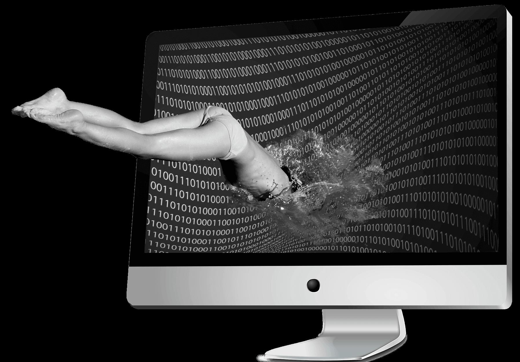 plongeon dans le web