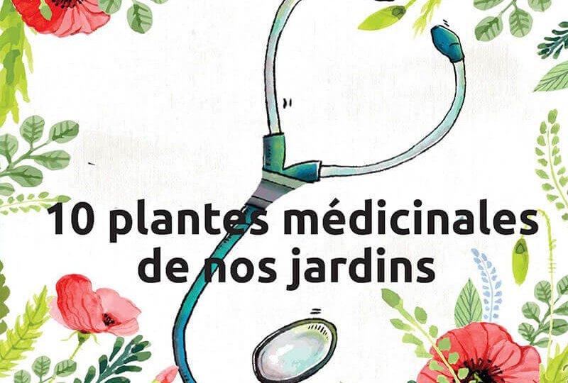 bagneux junior webzine sur les plantes médicinales