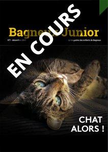 journal web sur les chats - en cours